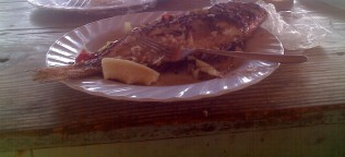 Half eaten..Its harder than you think...it is a big fish